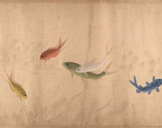 cinco_peces